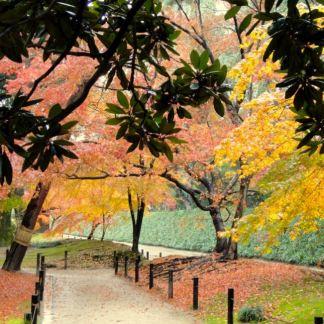 Japan park